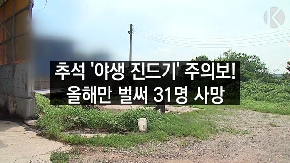 [라인뉴스] 추석 '야생 진드기' 주의보…올해31명 사망
