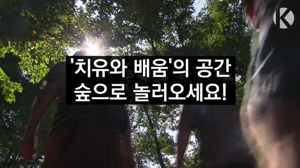 [라인뉴스] '치유하고 배우고'…숲으로 오세요!