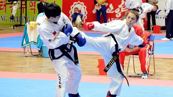태권도세계선수권대회 폐막…北 종합 1위