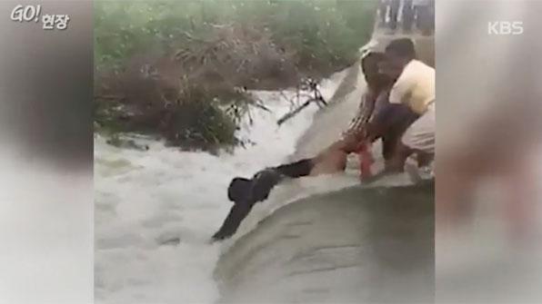 [고현장] 물살 뚫고 개(犬) 구한 남성들의 늠름한 뒷모습