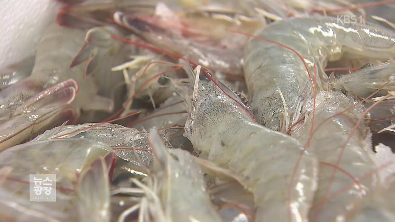 '새우가 대세' 소비 급증 수산물 매출 1위