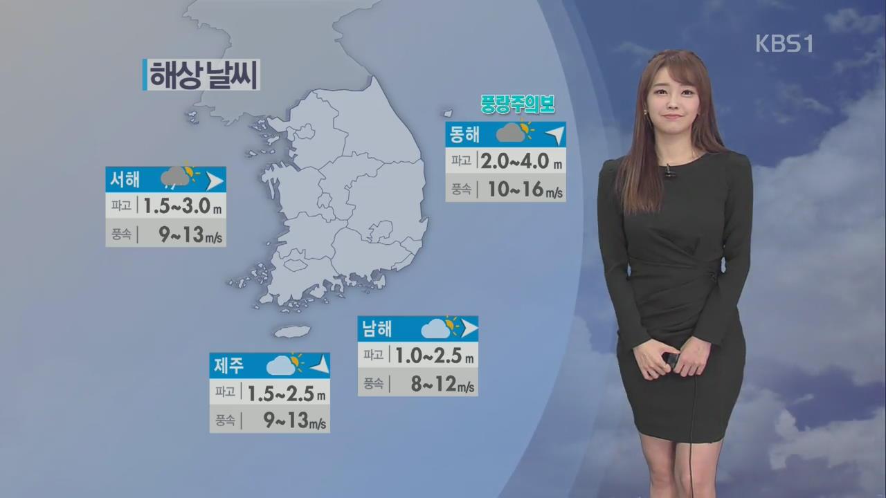 전국 체감온도 '뚝'…오늘 밤 서해안 눈 날려