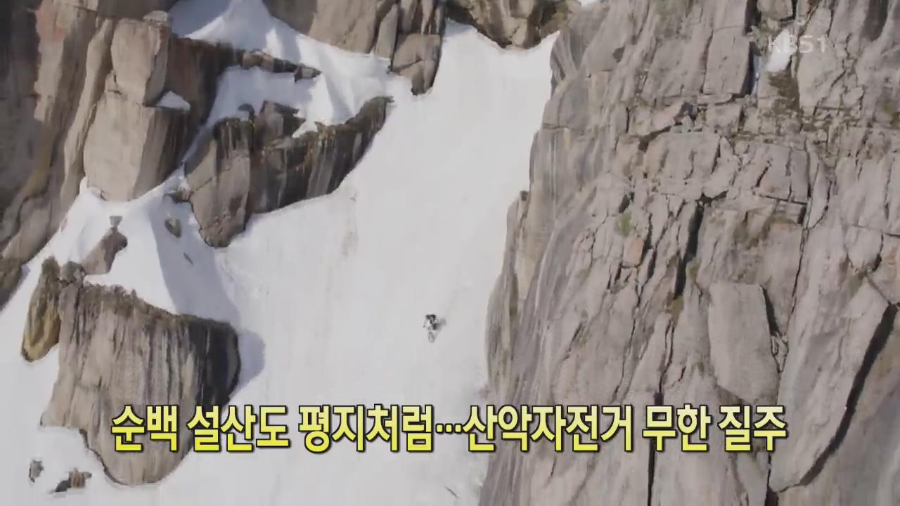 [디지털 광장] 순백 설산도 평지처럼…산악자전거 무한 질주