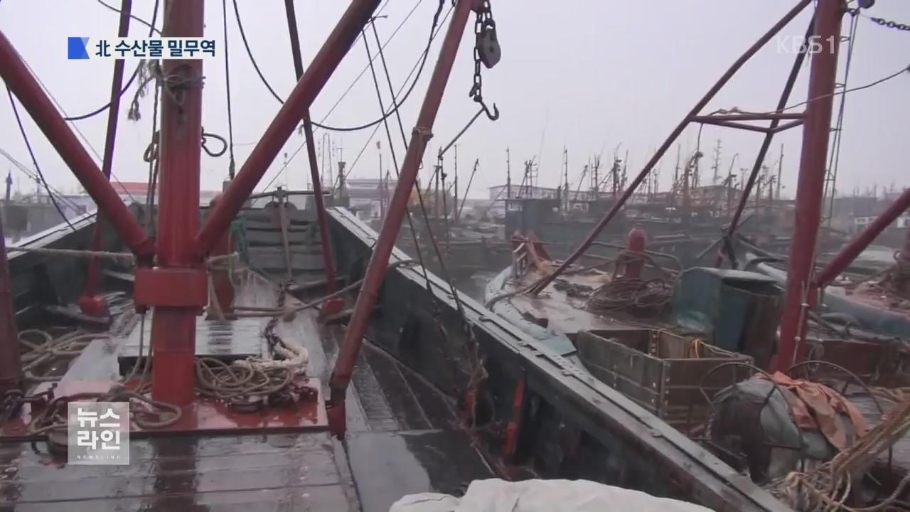 [단독] 北 수산물 버젓이…또 뚫린 제재