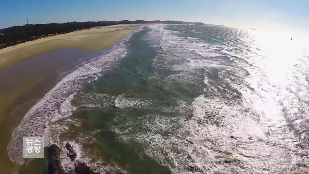 태안 기름 유출 10년…다시 찾은 청정바다
