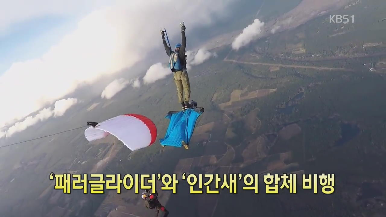 [디지털 광장] '패러글라이더'와 '인간 새'의 합체 비행