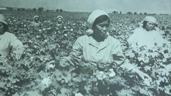 고려인 강제이주 80년…사샤의 아리랑