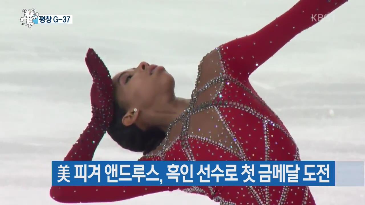 美 흑인 피겨선수, 서울올림픽 주제가로 평창행 도전