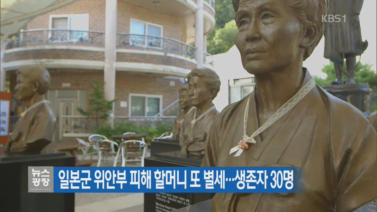 일본군 위안부 피해 할머니 또 별세…생존자 30명