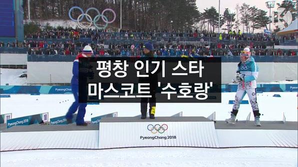 [라인뉴스] 마스코트 '수호랑', 평창 인기 스타로!