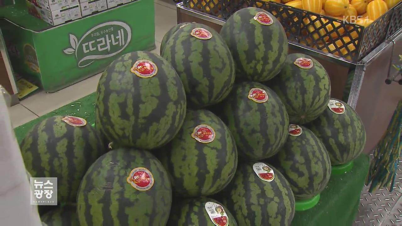 수박·참외가 벌써…제철 사라진 과일 시장