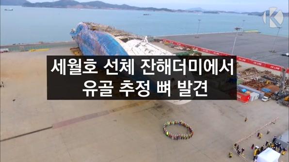 [라인뉴스] 세월호 선체 잔해더미에서 유골 추정 뼈 발견