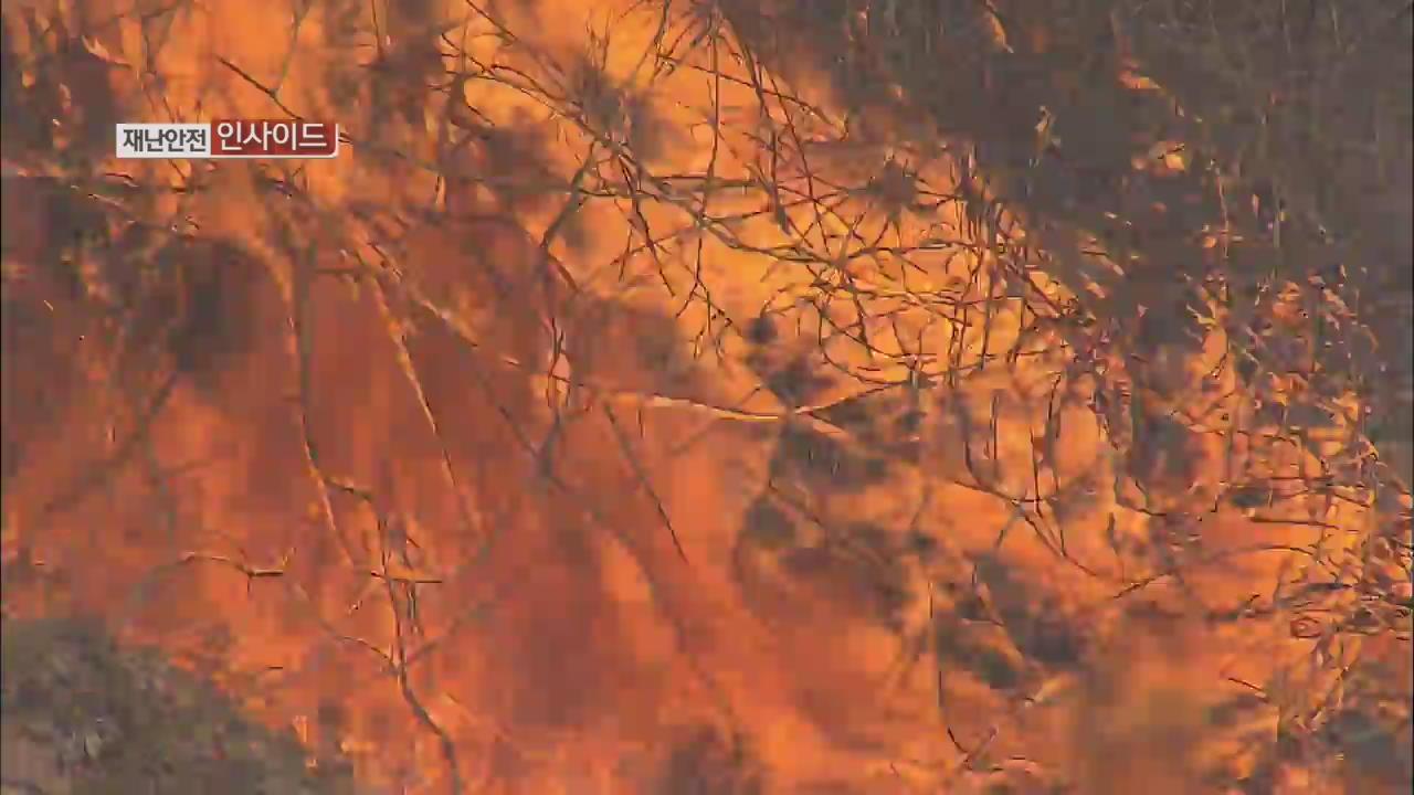 [재난·안전 인사이드] 대형 산불 비상…한 달간 특별 대책 기간