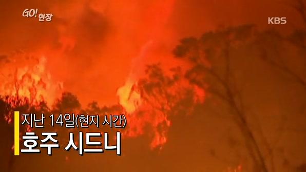 [고현장] 호주 시드니 비상경보 발령…'산불과의 전쟁'
