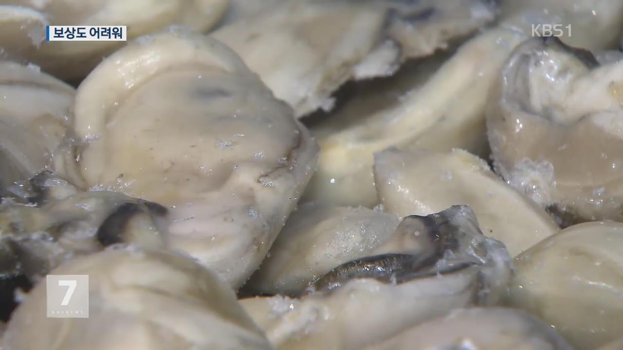 패류독소 확산에 어민 생계 피해…대책은 '막막'