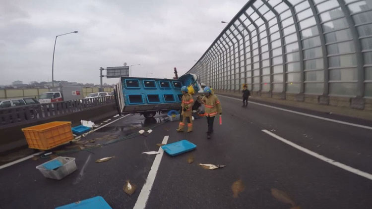 [고현장] 고속도로서 수산물 트럭 전복…쏟아진 광어들 '팔딱'