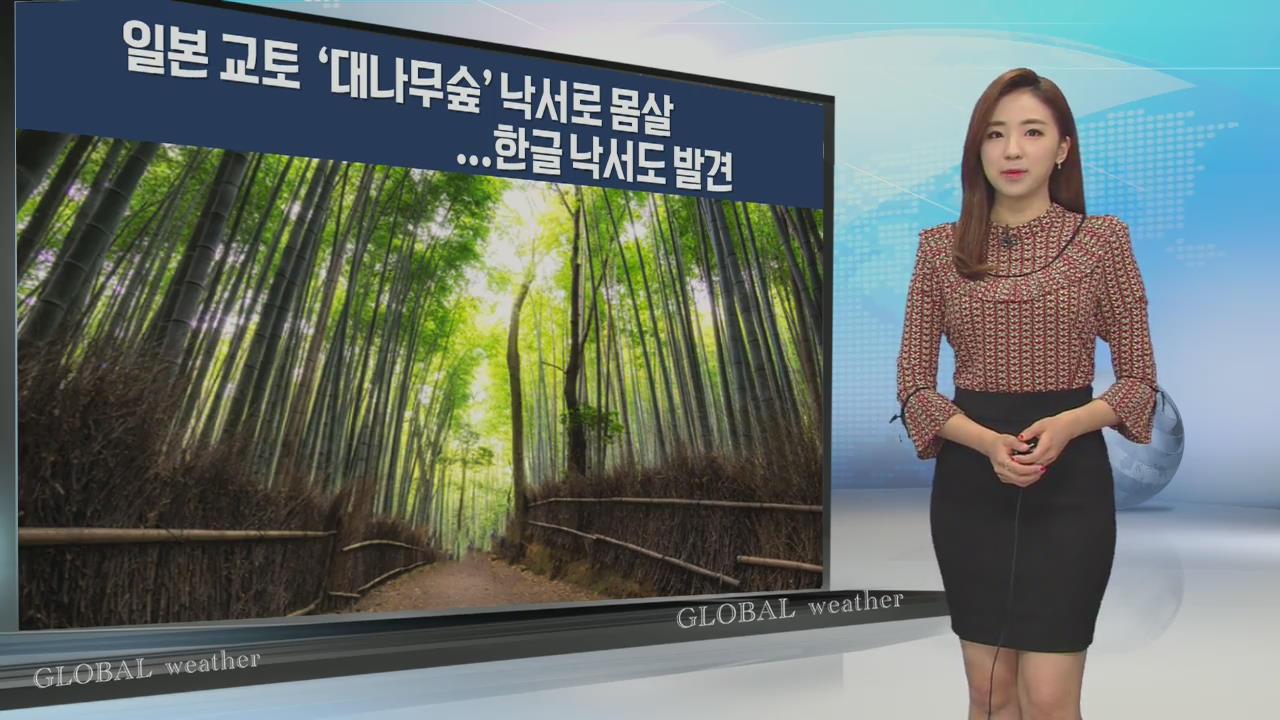 [지구촌 날씨] 日 교토 '대나무숲' 낙서로 몸살…한글 낙서도 발견
