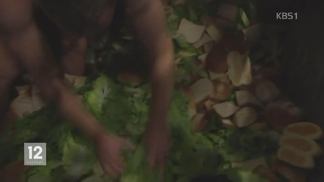 호주, 쓰레기통에서 음식물 찾는 사람들
