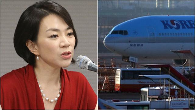 국토부, '땅콩회항' 대한항공에 과징금 27억 부과