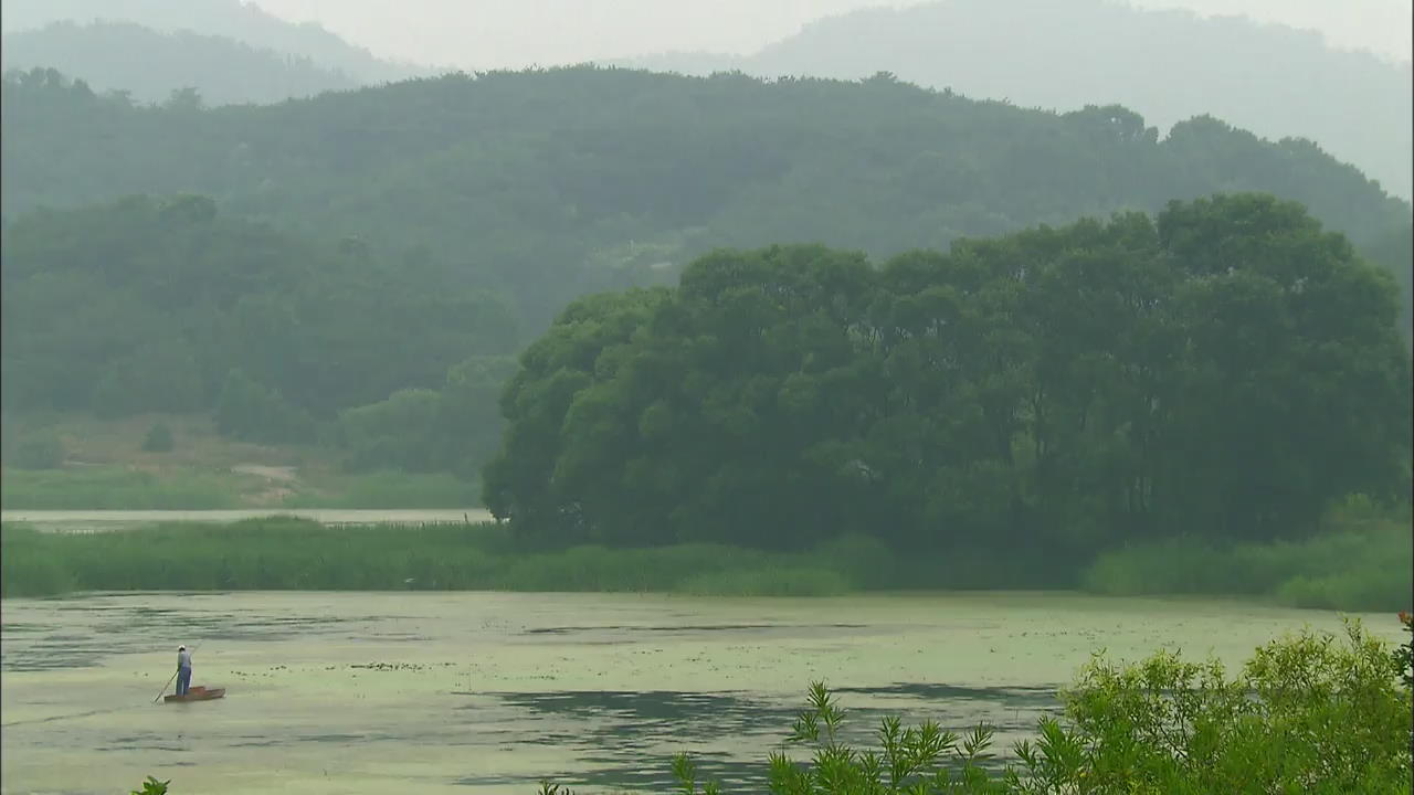 [Korea Snapshot] Changnyeong Upo Wetland