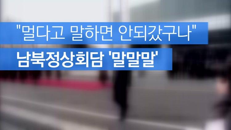 """""""멀다고 말하면 안되갔구나""""…남북정상회담 '말말말'"""