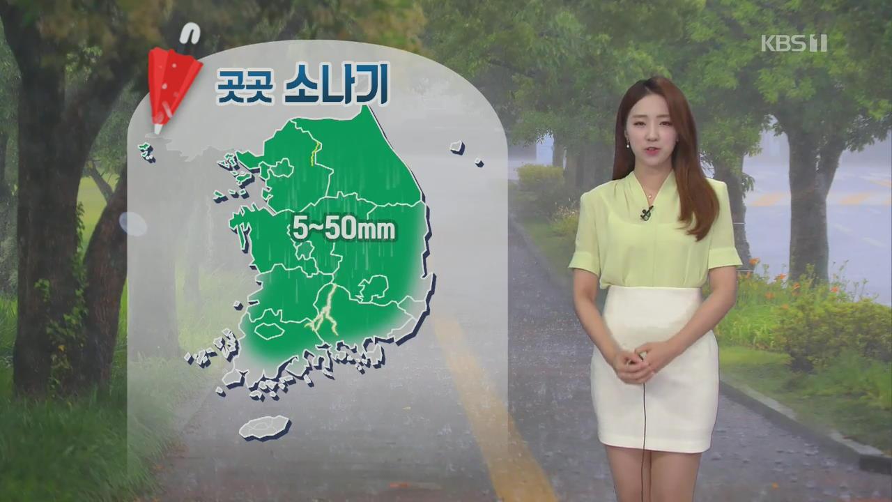 [날씨] 오늘도 강한 소나기…내일 장마전선 북상