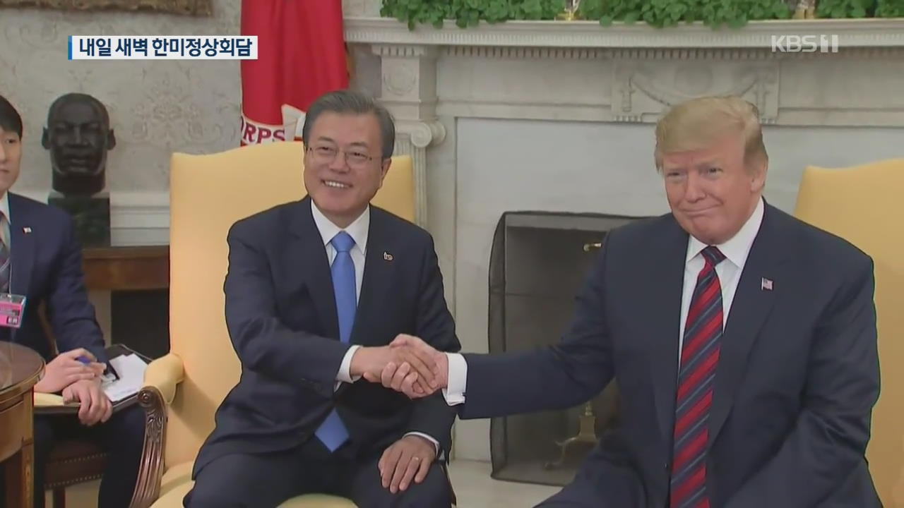 내일 한미정상회담…'비핵화 진전'·'동맹 강화' 논의