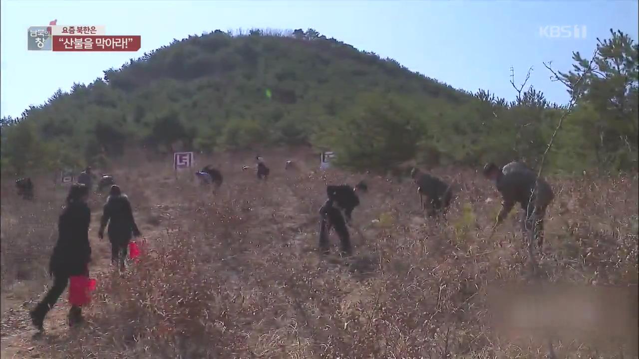 """[요즘 북한은] """"산불을 막아라!""""…화재 예방 총력 외"""