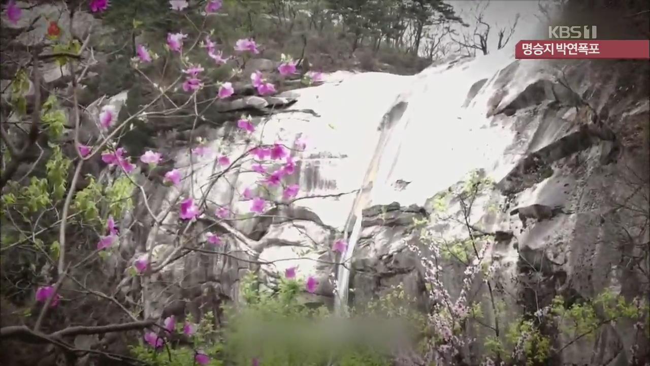[북한 영상] 명승지 박연폭포