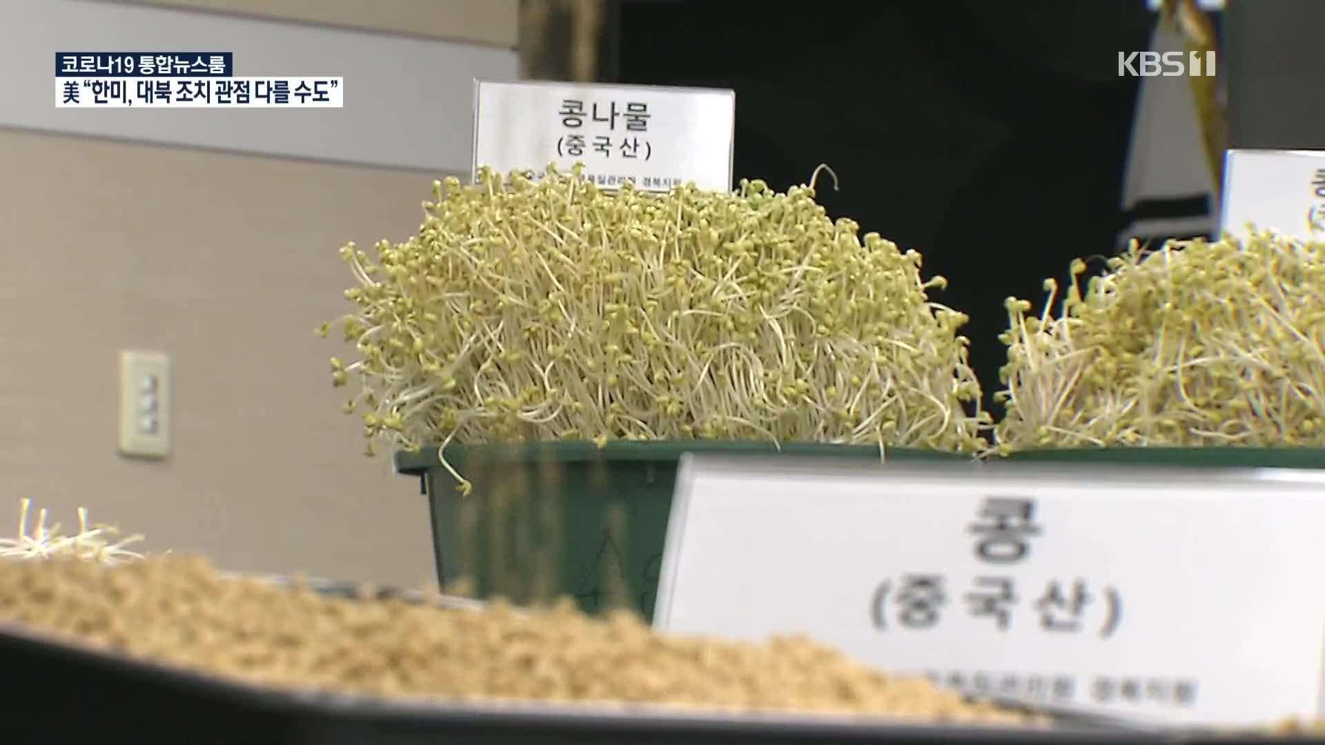 국내산 둔갑 중국산 콩나물, 학교 급식에 대량 유통